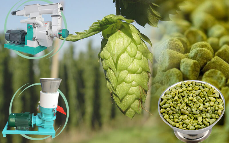 Make Hops Pellets for Brewery/Hops Pellet Machine